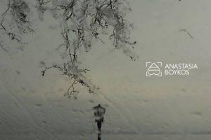 anas-9